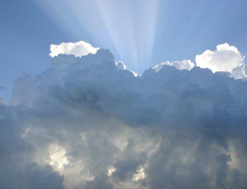 Welchen Einfluss hat das Wetter auf den Absatz?
